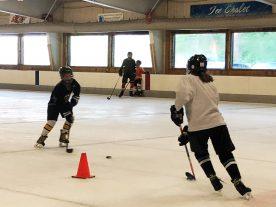 hockey - 2018_IMG_1289.jpg