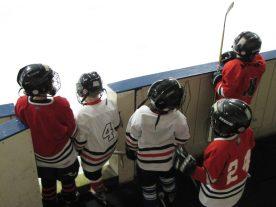 hockey2012 - IMG_5013-1194x896.jpg