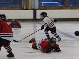 hockey2012 - IMG_5021-1194x896.jpg