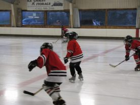 hockey2012 - IMG_5022-1194x896.jpg