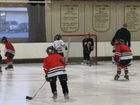 hockey2012 - IMG_5023-1194x896.jpg
