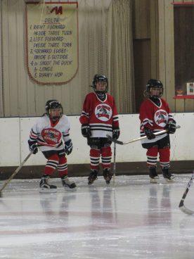 hockey2012 - IMG_5024-1194x1592.jpg